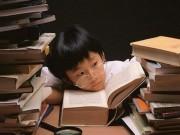Giáo dục - du học - Giúp con đối phó vấn nạn học quá tải