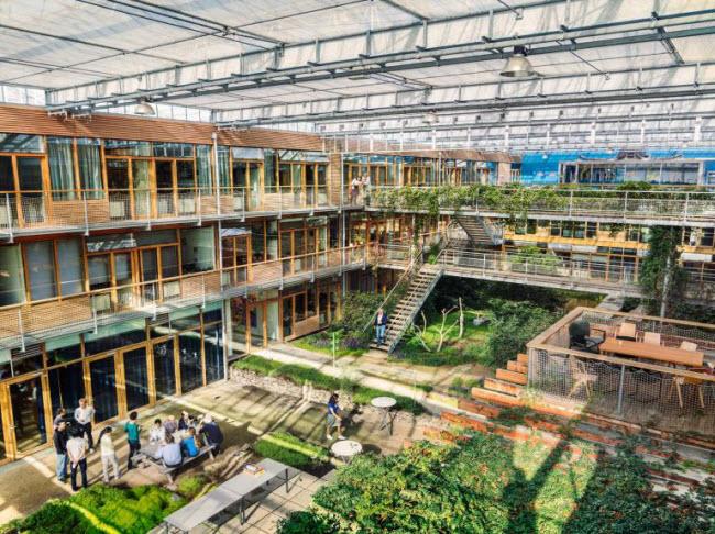 """Chiêm ngưỡng các trang trại trong nhà kính """"đẹp như tranh"""" ở Hà Lan - 3"""