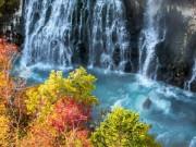 Choáng ngợp những hình ảnh đẹp chưa từng thấy ở Nhật Bản