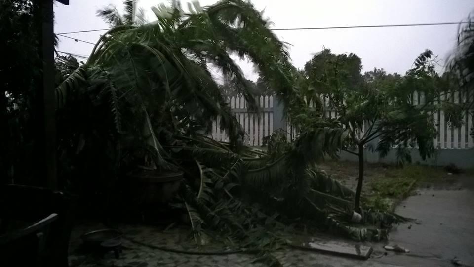 Tàn phá Nam Trung Bộ, bão tiếp tục gây thiệt hại ở Tây Nguyên - 16