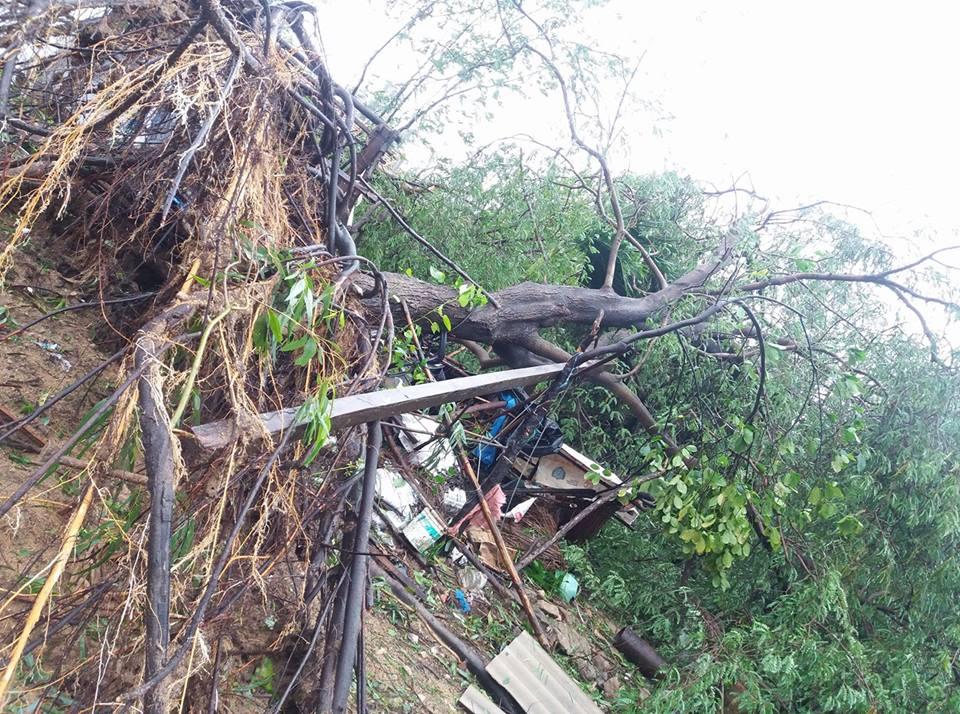Chùm ảnh sức tàn phá khủng khiếp của bão số 12 - 16