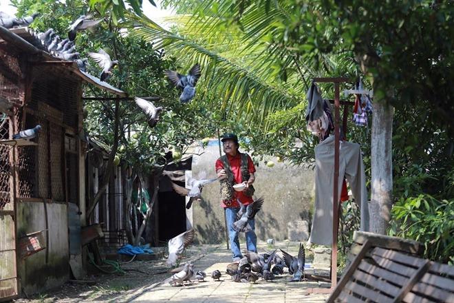 Giang Còi tiết lộ lý do lui về sống trong mảnh vườn 10.000 mét ở quê - 12