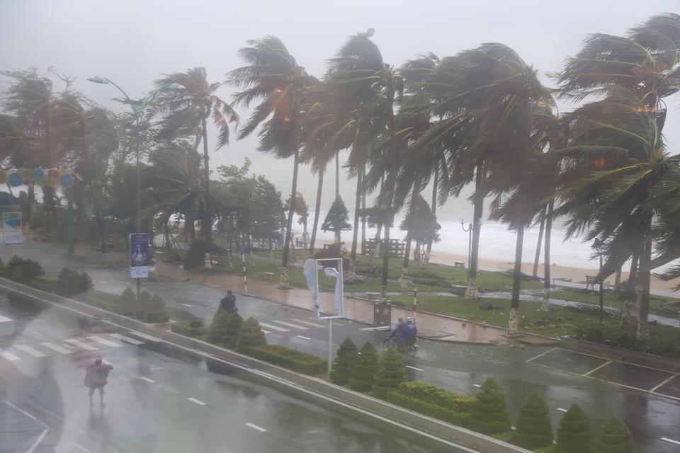 Chùm ảnh sức tàn phá khủng khiếp của bão số 12 - 3