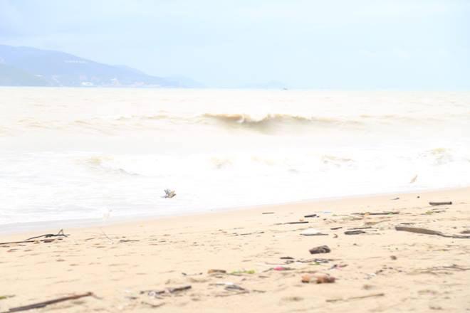 Tàn phá Nam Trung Bộ, bão tiếp tục gây thiệt hại ở Tây Nguyên - 5