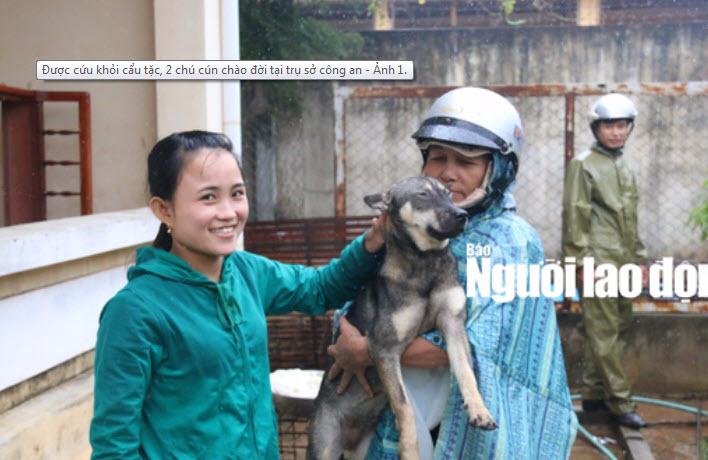 """Được cứu khỏi """"cẩu tặc"""", 2 chú cún chào đời tại trụ sở công an - 1"""