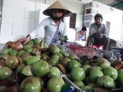 Thị trường - Tiêu dùng - Xuất khẩu rau quả sẽ thu về được tới 69.000 tỷ đồng