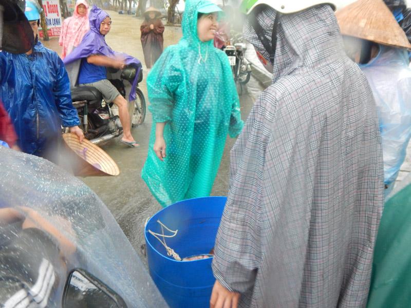 Huế: Người dân điêu đứng khi cá lồng chết hàng loạt - 4
