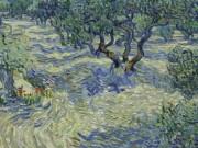 Bất ngờ tìm thấy con vật trong tranh 128 tuổi của Van Gogh