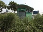 HN: Hàng loạt nhà vệ sinh trăm triệu bị bỏ hoang, cỏ dại mọc um tùm