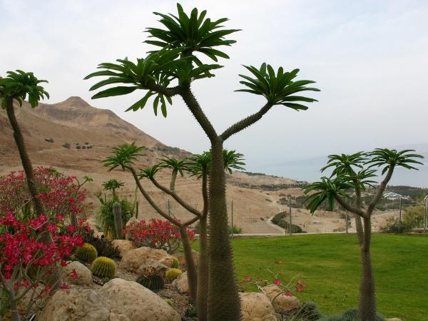 """""""Lịm tim"""" trước 10 ốc đảo đẹp nhất thế giới - 2"""