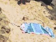 Con rắn độc khiến bãi biển Úc hỗn loạn