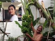 Bất ngờ vì cuộc sống giản dị của bố mẹ Hà Tăng khác xa con gái