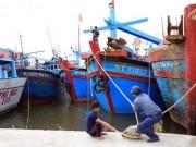 Ninh Thuận - Bình Thuận khẩn trương ứng phó bão số 14