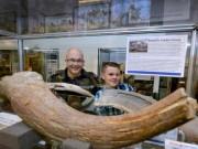 Anh: Đi dạo bãi biển, phát hiện cổ vật quý 6.000 năm
