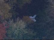 Bộ Quốc phòng cho biết nguyên nhân phi công tử nạn ở Anh