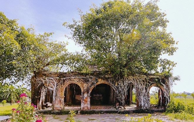 Kỳ thú đình làng nằm gọn trong bộ rễ của hai cây bồ đề - 1