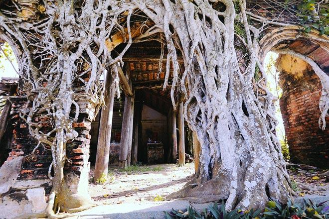 Kỳ thú đình làng nằm gọn trong bộ rễ của hai cây bồ đề - 5