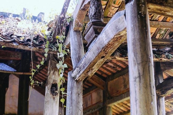Kỳ thú đình làng nằm gọn trong bộ rễ của hai cây bồ đề - 8