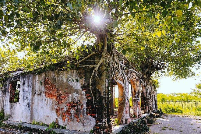 Kỳ thú đình làng nằm gọn trong bộ rễ của hai cây bồ đề - 13