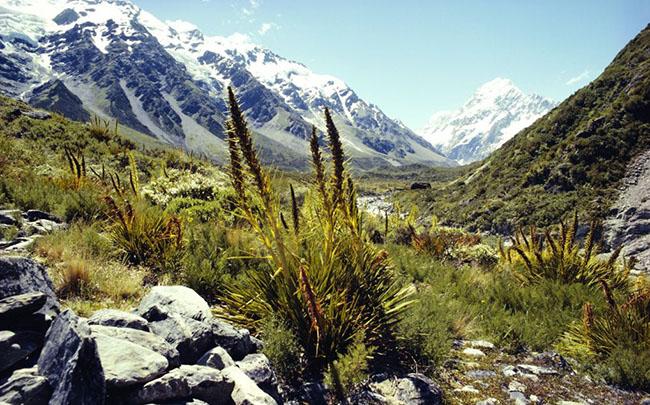 Thị trấn Queenstown, New Zealand: Queenstown vốn là một nơi thu hút du khách tham quan quanh năm nhưng trong những tháng mùa đông (từ tháng 5- tháng 9) nó mới thực sự bộc lộ bản sắc riêng của mình, khi các dãy núi Remarkables và dãy núi Coronet Peak gần đó trở thành nơi trượt tuyết tốt nhất ở New Zealand, và thị trấn đặc biệt sôi động vào tháng 6 và tháng 7 khi lễ hội Liên hoan Mùa đông Queenstown bắt đầu diễn ra.