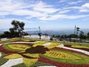 Ai đã tạo nên những  vườn hoa  lưng chừng trời?