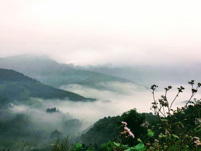 Gió đổi mùa, rủ nhau lên Tà Xùa săn mây - 7