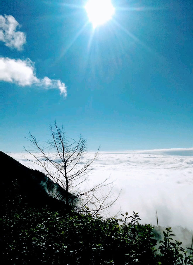 Gió đổi mùa, rủ nhau lên Tà Xùa săn mây - 15