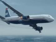 Điều không tưởng khi loài chim va chạm với động cơ máy bay