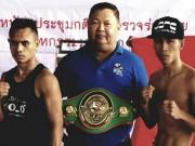 """TRỰC TIẾP boxing Trần Văn Thảo - George Lumoly:  """" Mayweather Việt """"   & amp; cột mốc lịch sử"""