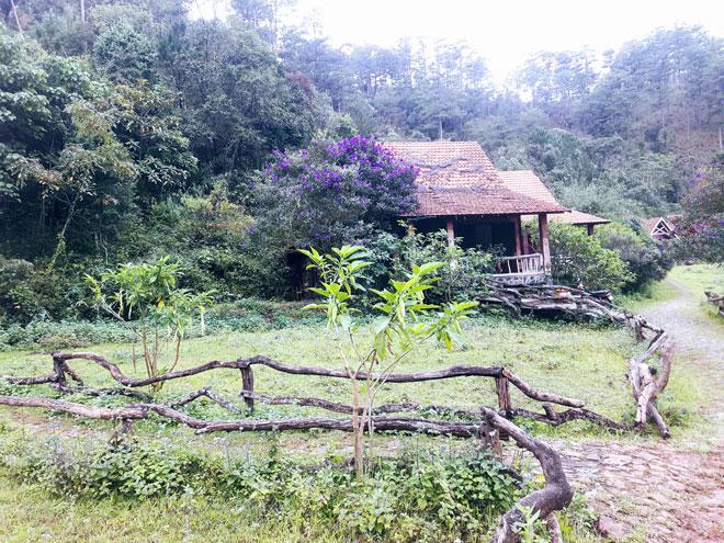 Ngôi làng có tên lạ lùng, đẹp như cổ tích ẩn mình giữa đồi thông Đà Lạt - 12