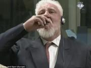 Thế giới - Thủ lĩnh quân sự Bosnia tự tử ngay trên sóng trực tiếp