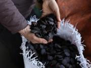 """Sức khỏe đời sống - Hơn 90% gia đình Việt bỏ đi loại hạt là """"tiên dược"""" cho người nghèo"""
