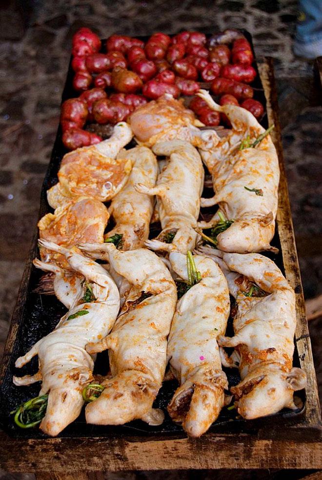 """Chuột lang nướng, món đặc sản gây tranh cãi """"nảy lửa"""" ở nhiều quốc gia - 6"""