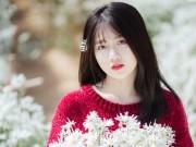 Say mê ngắm hot girl Sài thành đẹp như tranh vẽ bên cúc họa mi Hà Nội