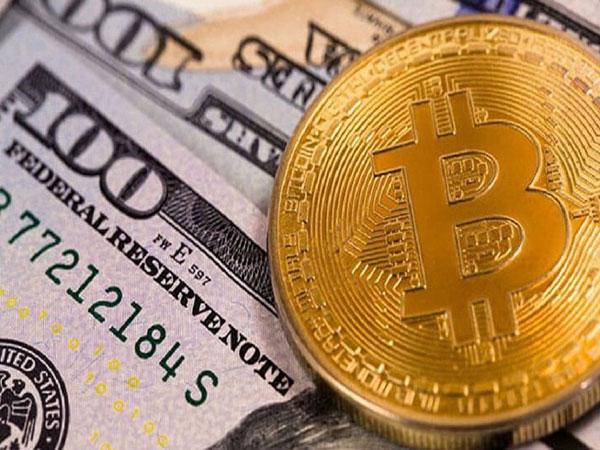 Nhà đầu tư bitcoin mất hơn 3.000 USD chỉ sau 1 đêm
