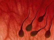 Quý ông xuất tinh ra máu là dấu hiệu của bệnh gì?