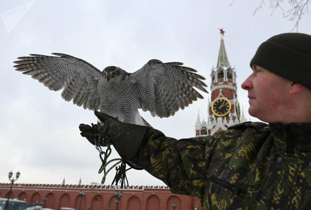 Đội cảnh vệ biết bay chuyên bảo vệ nơi làm việc Tổng thống Nga