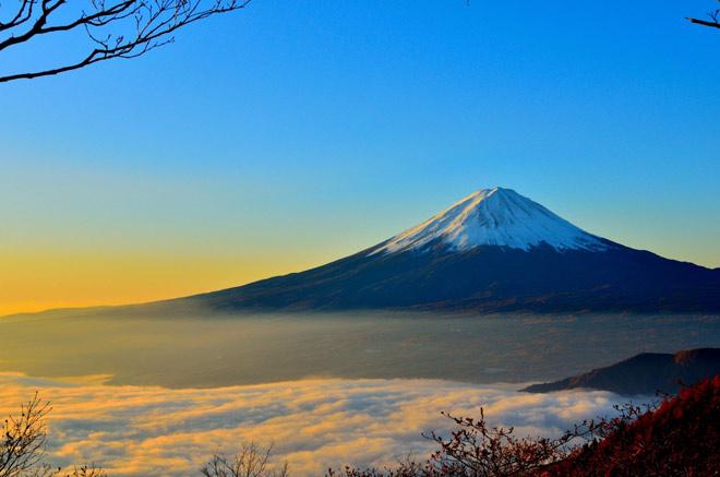 Du Xuân Mậu Tuất 2018 tại Nhật Bản - 3