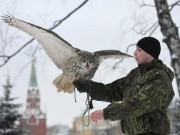 Thế giới - Đội cảnh vệ biết bay chuyên bảo vệ nơi làm việc Tổng thống Nga