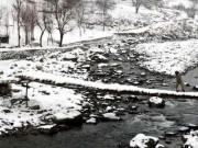 Sức khỏe đời sống - Những người sống ở khu vực lạnh tăng nguy cơ bị ung thư