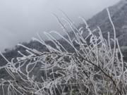 Tin tức trong ngày - Tiếp tục hứng không khí lạnh, miền Bắc khả năng có băng giá nhiều nơi