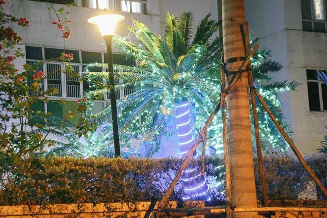"""Giáng sinh ở Sài Gòn: """"Lạc lối"""" ở 2 khu phố nhà giàu - 9"""