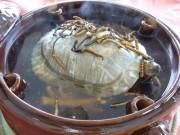 """Ẩm thực - Ăn canh ba ba sống – thú ẩm thực """"rợn tóc gáy"""" của người Trung Quốc"""