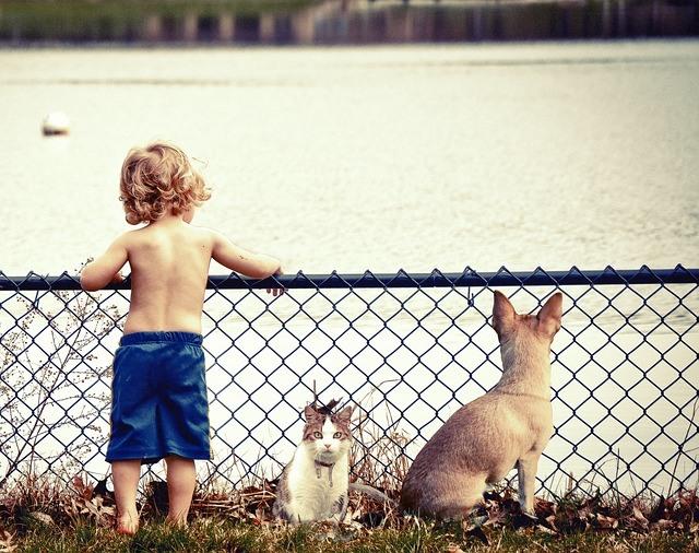10 điều cha mẹ nhất định phải dạy nếu muốn con thành người tử tế, sống trách nhiệm - 6