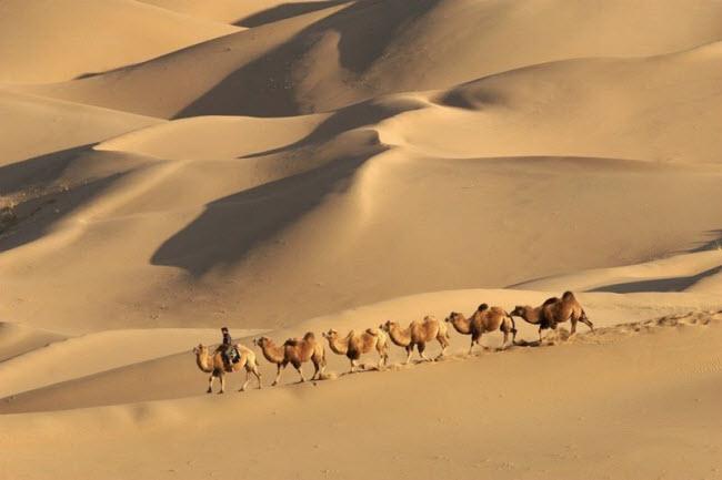 Những hồ nước bí ẩn trên sa mạc đẹp như tiên cảnh ở Trung Quốc - 3