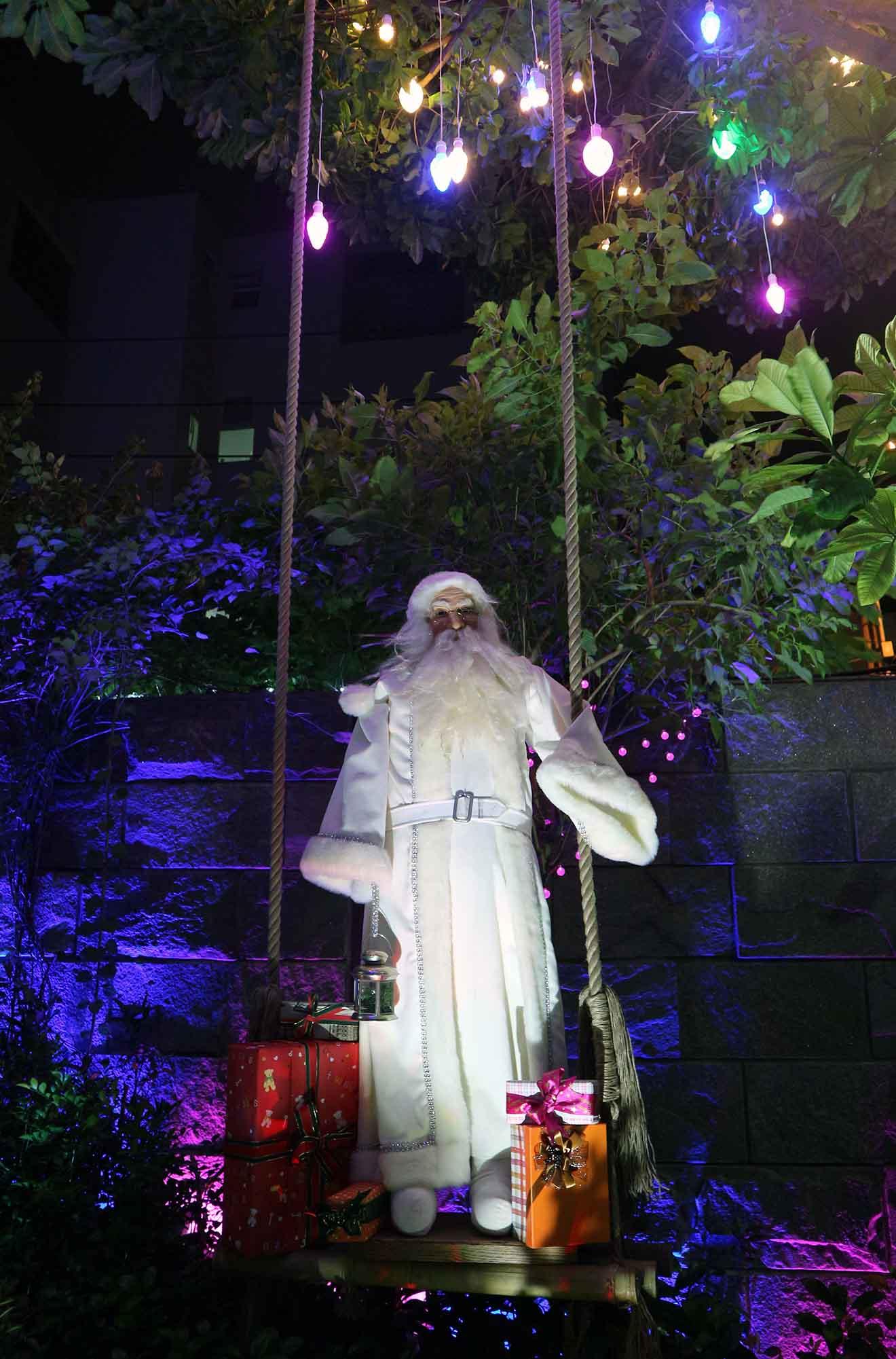 Hàng trăm người chen lấn chụp ảnh Noel tại biệt thự 3 triệu USD của Đàm Vĩnh Hưng - 15