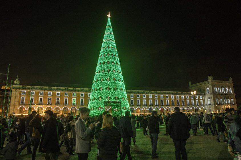 Choáng ngợp 12 cây thông Noel đẹp và