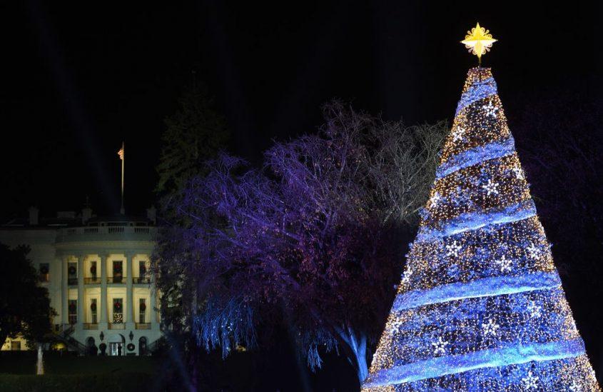 """Choáng ngợp 12 cây thông Noel đẹp và """"khủng"""" nhất năm 2017 - 10"""