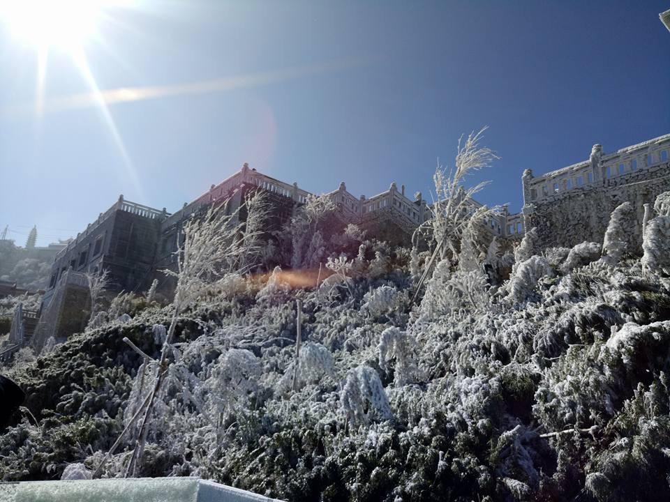 Sau Fansipan, sương muối trắng xóa xuất hiện ở Sa Pa