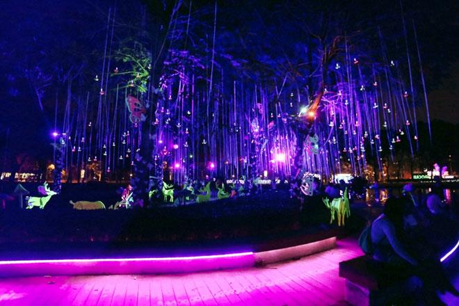"""""""Lạc lối"""" trong vườn ánh sáng độc nhất ở Sài Gòn dịp Giáng sinh - 16"""